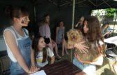 """6 czerwca 2018 – """"ONZ pomaga zwierzętom"""" na """"Animal Party"""""""